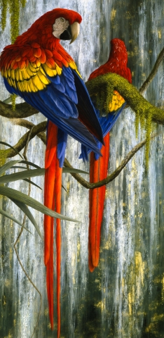 The Waterfall  (Scarlet Macaws) (detail)