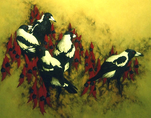 Magpies IV