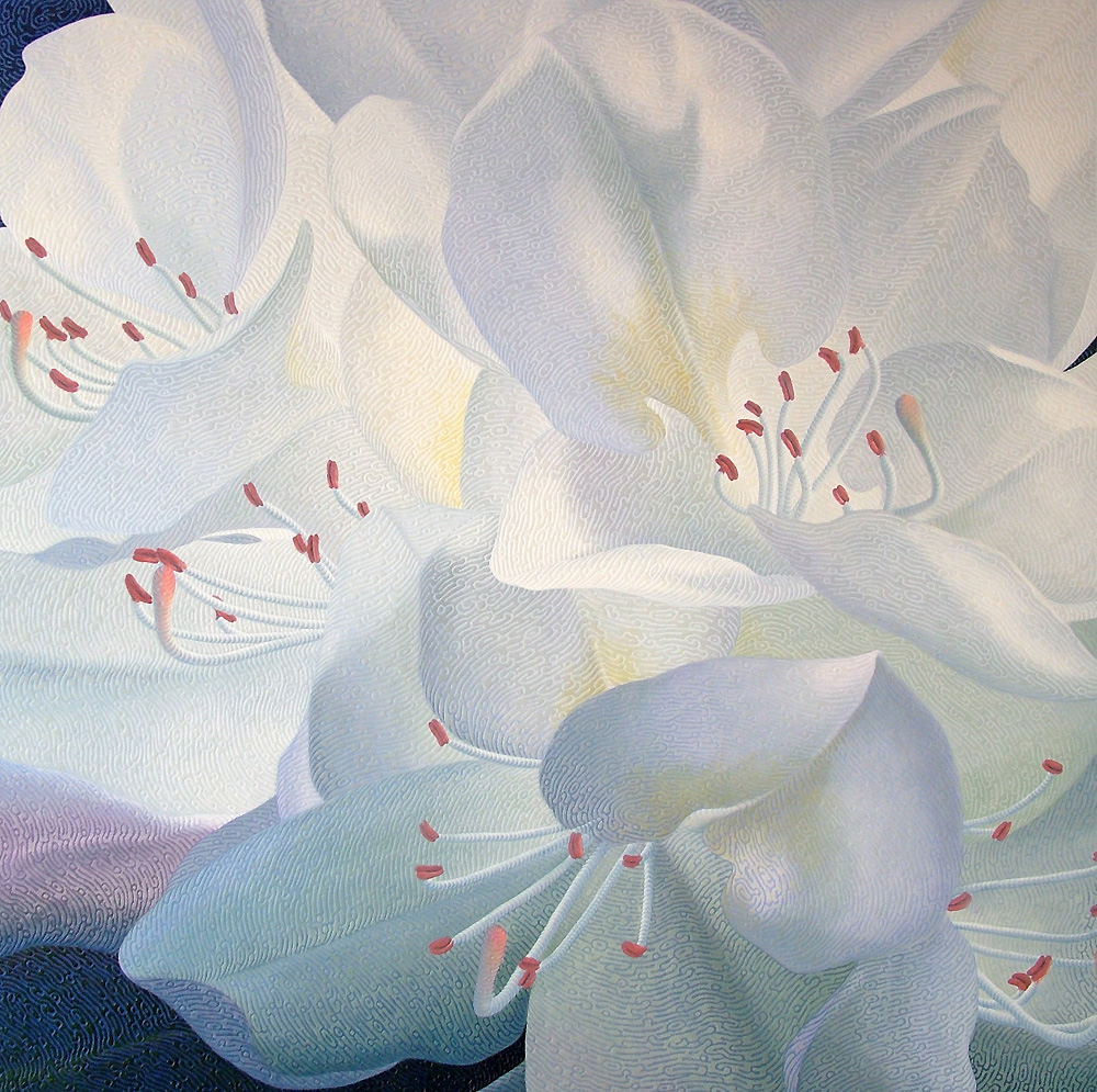 Pale Echoes ( rhododendron )